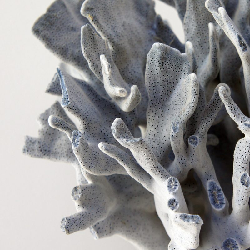 Coral gigante azul sobre peana de madera